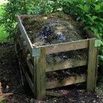 Guia da compostagem caseira: Saiba como montar e usar no cultivo